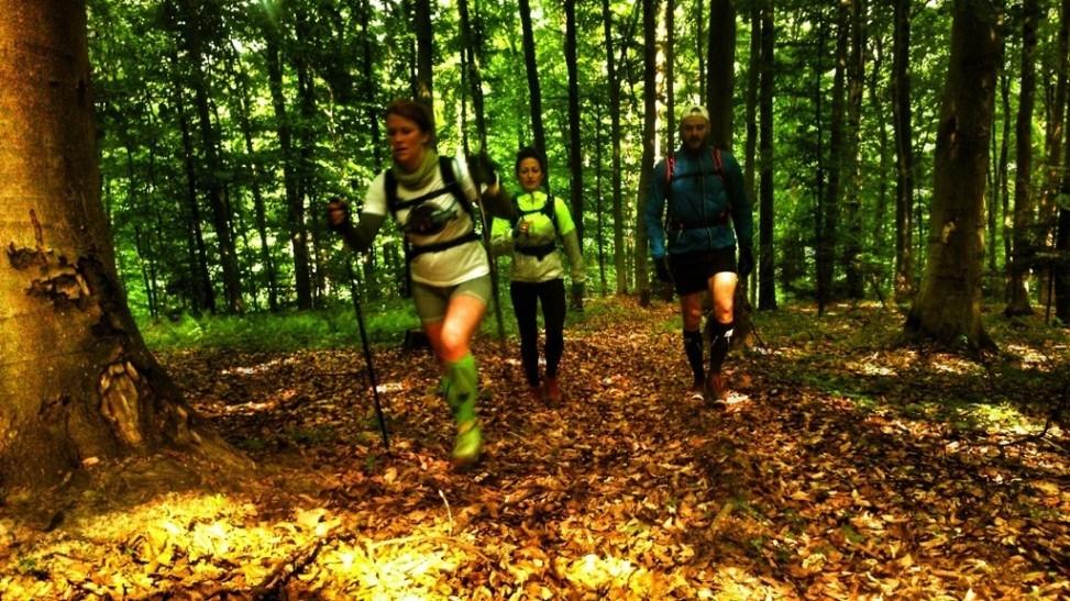 Szczytniak - górskie bieganie w Górach Świętokrzyskich