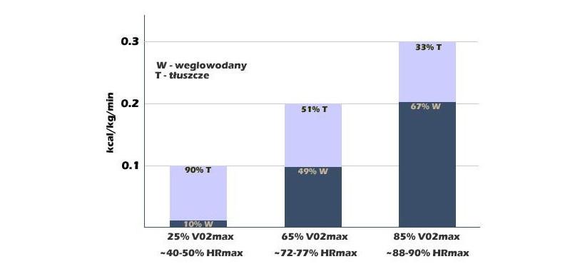 Węglowodany - cukier, a bieganie - zużycie w zależności od intensywności wysiłku