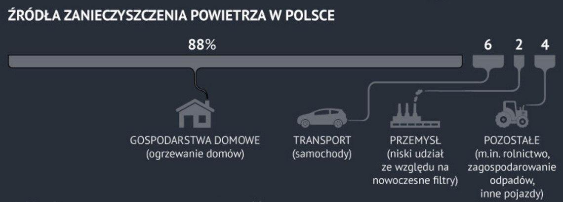 Przyczyny zanieczyszczenia powietrza w PL. Źródło Onet.pl