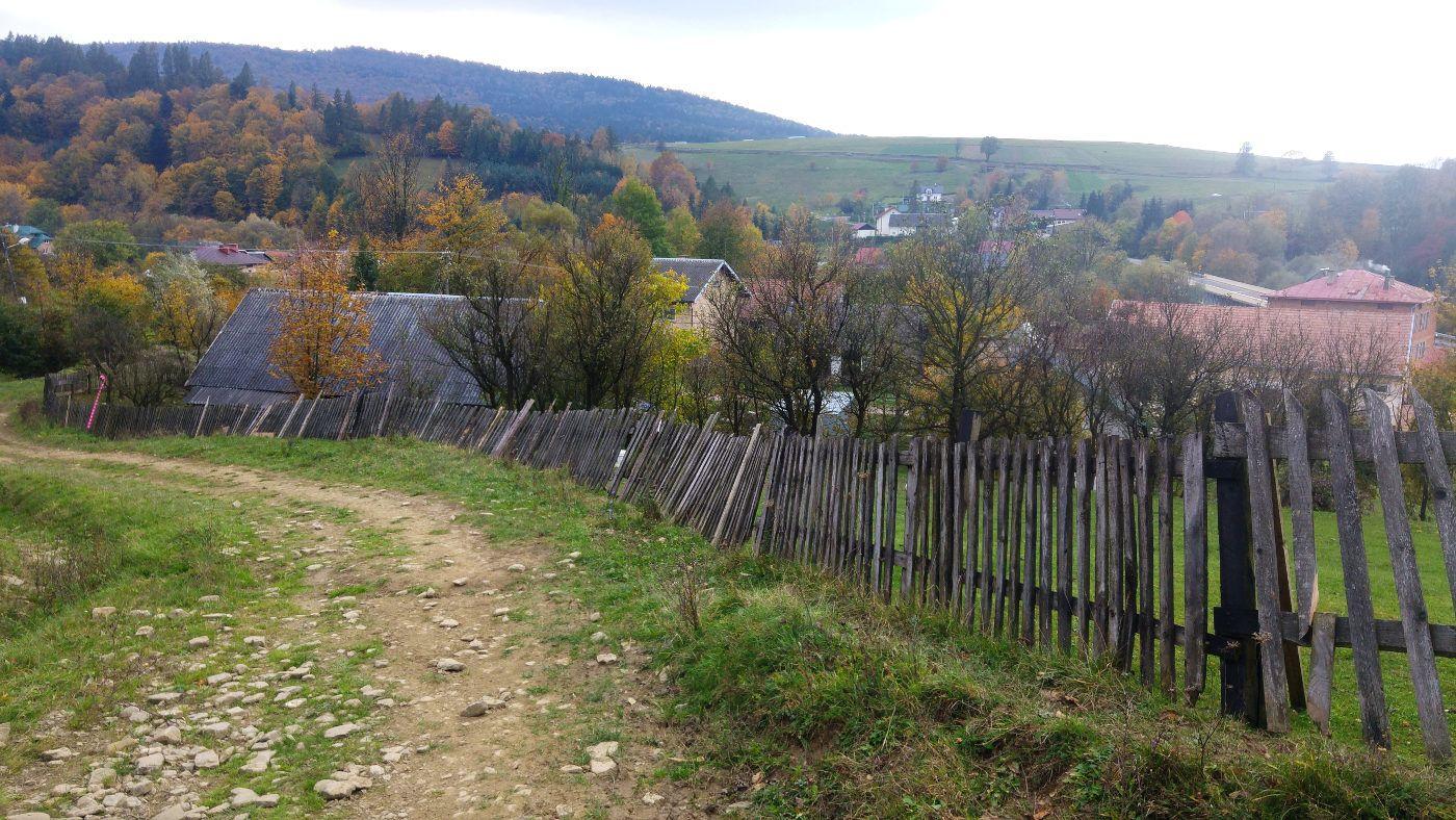 Przez wioski i pola ucieka fasola