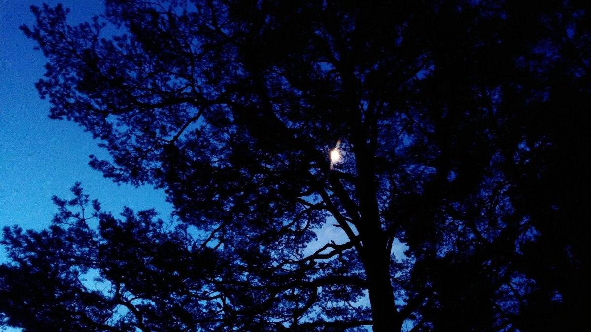 Nocą na ultra nic nie widać...
