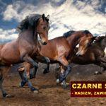 Zarabianie na bieganiu. Afrykanie w Polsce