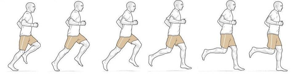 Bieg naturalny, za: Doc Andrew Murray