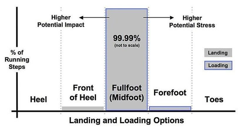 Lądowanie na pięcie obciąża stawy, na przodzie stopy - mięśnie